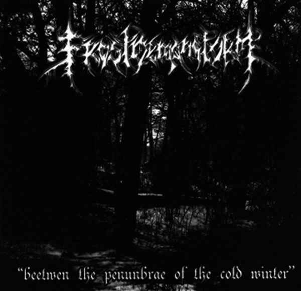 Descarga - Frostdemonstorm - Beetwen The Penumbrae Of The Cold Winter - 2008